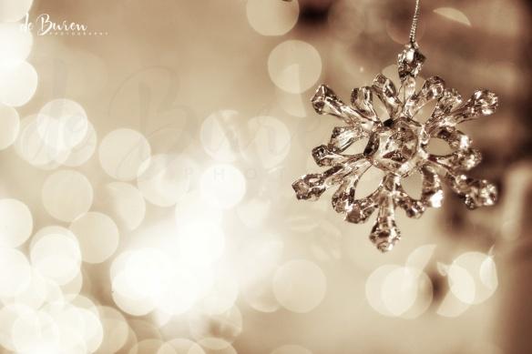 de_Buren_Photography-128