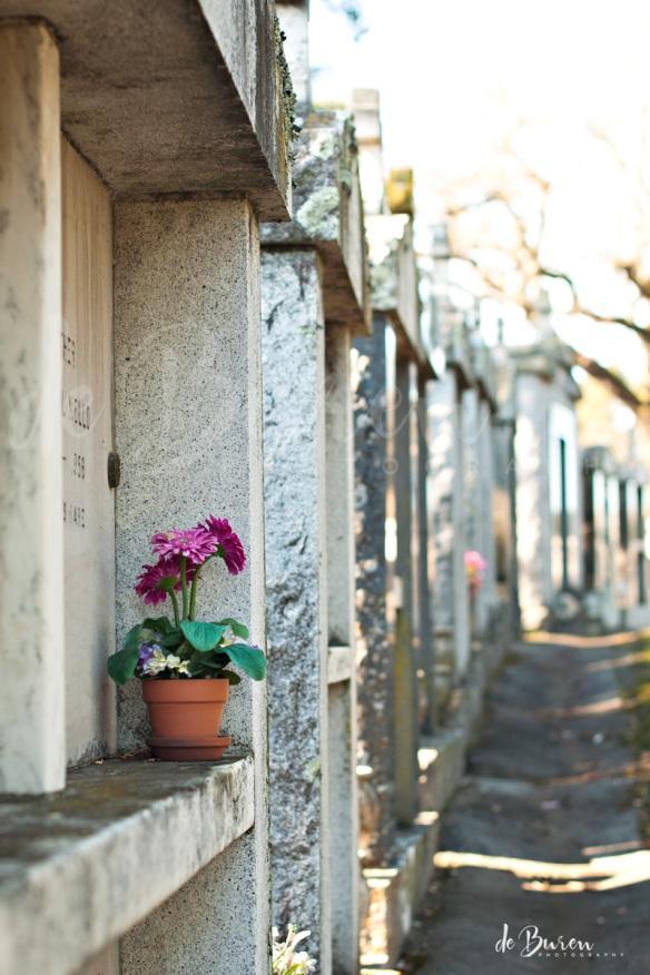 Jean_H_de_Buren_cemetery_3517