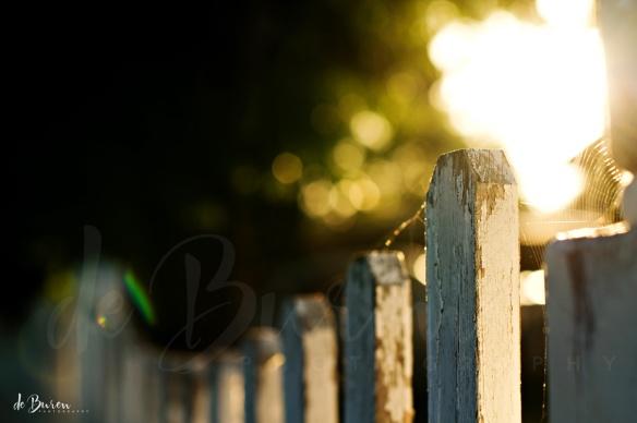 Jean_H_de_Buren_morning_walk_5812a