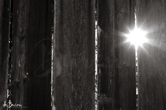Jean_H_de_Buren_sunrise_fence_7725-BW