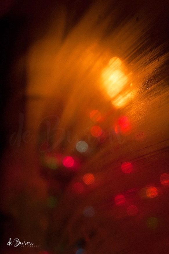 Jean_H_de_Buren_Christmas_Lights_7911