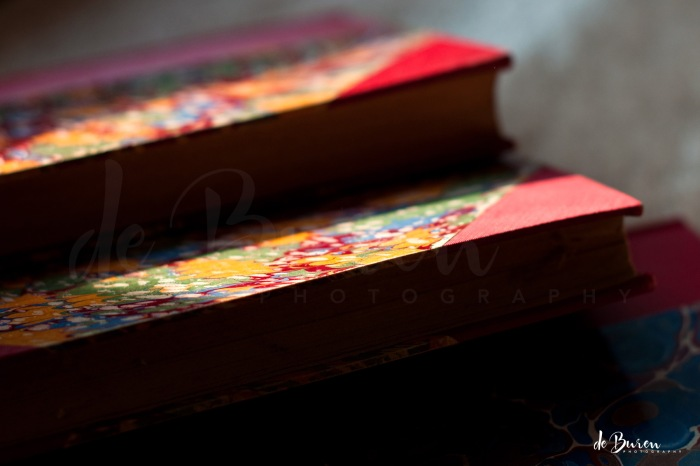 jean_H_de_Buren_Family_Books_5673